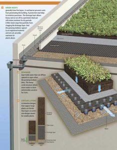 roof garden drinase