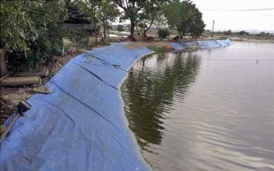 Geosintetik dalam Aquaculture